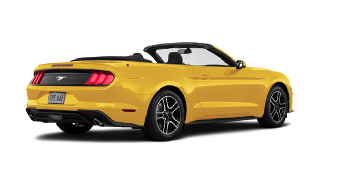 2018 Ford Mustang Convertible EcoBoost | Photo 5 | Triple Yellow Tri-Coat